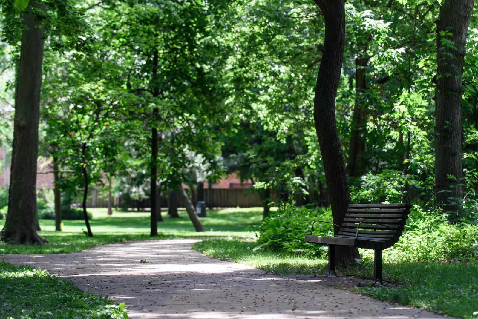 Beautiful Austin Gardens in Oak Park, IL