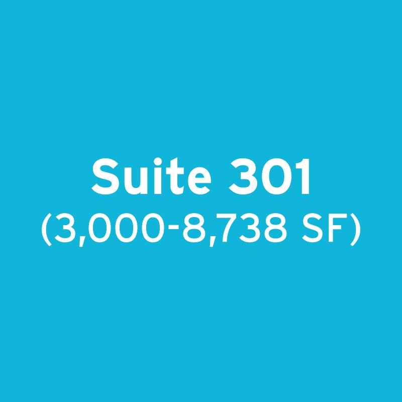 Suite 301: 3,000 – 8,738 SF