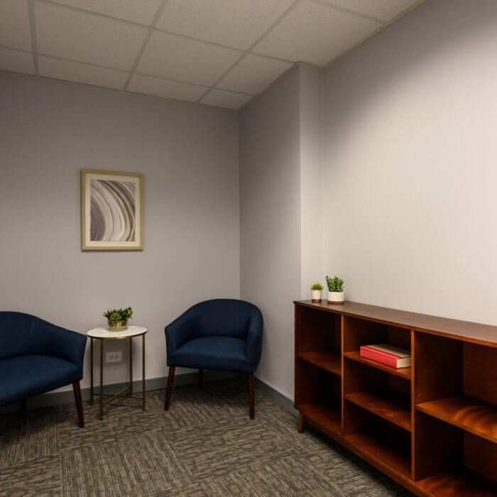 1010 Lake Street, Oak Park, IL available offices and medical spaces in Downtown Oak Park