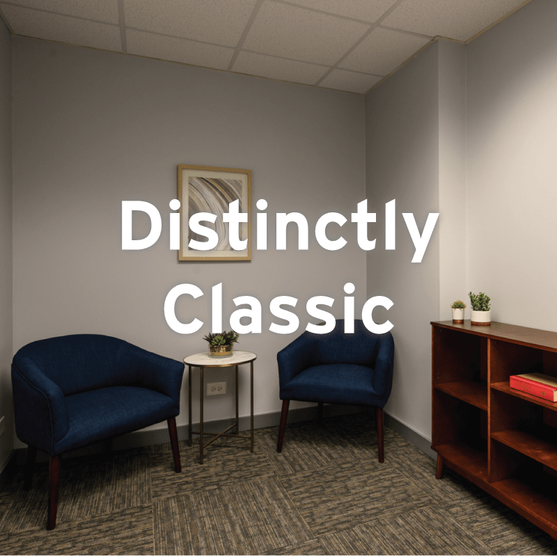 Distinctly Classic move-in ready spec suite at 1010 Lake Street, Downtown Oak Park